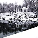 Winter in the old park    by kindangel
