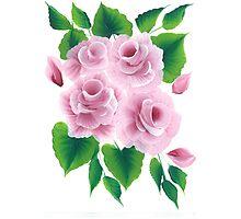 Mindove rose (pink)  Photographic Print
