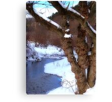 The Willow in Winter Canvas Print