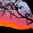 Sunset over the hills by Ali Brown