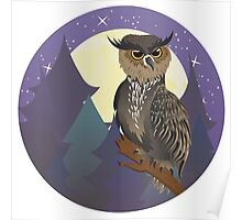 Owl in Night Forest Poster