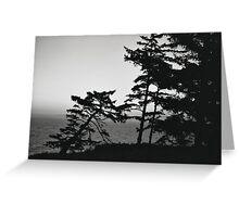 crooked tree Greeting Card