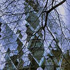 the gherkin reflects by Janis Read-Walters