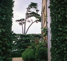 Entrance arch at Canons Ashby house by nealbarnett