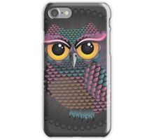 Pink and Blue Color Owl 2 iPhone Case/Skin