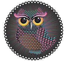 Pink and Blue Color Owl 2 Photographic Print