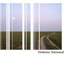 doñana sunset by calcidiscus