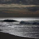 Silver Ocean 8998 by João Castro