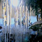 Sunny Icicles by Karen Martin