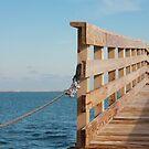 The bridge to the sea by mattypaq
