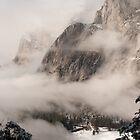 Yosemite Fog - Lower Brother in front of El Capitan by Alan Gaulding