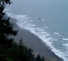 Ocean View from an Oregon Cliff by tracyannjones