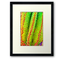 Psychedelic Saguaro Cactus Grooves Spikes and Spines Pattern Framed Print