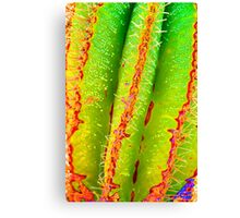Psychedelic Saguaro Cactus Grooves Spikes and Spines Pattern Canvas Print