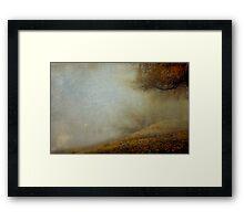 Trees of the Fraser Framed Print