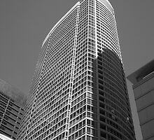 Chicago Skyscraper by Frank Romeo