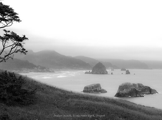 Indian Beach Oregon by mikeno