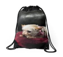 """""""Queen of the Couch""""... prints and products Drawstring Bag"""