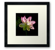~ Beauty and the Beast ~ Framed Print