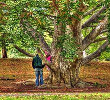 Daddy, watch me climb this big tree! by Monica M. Scanlan