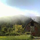 Grampa's old barn by Lonnie Ornie