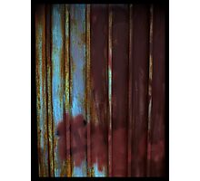 Rusted Gates Make Good Houseguests Photographic Print