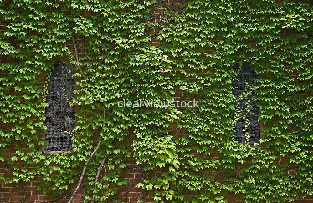 Lost Windows 2 - Gostwyck Chapel - Spring by clearviewstock