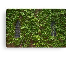 Lost Windows 2 - Gostwyck Chapel - Spring Canvas Print