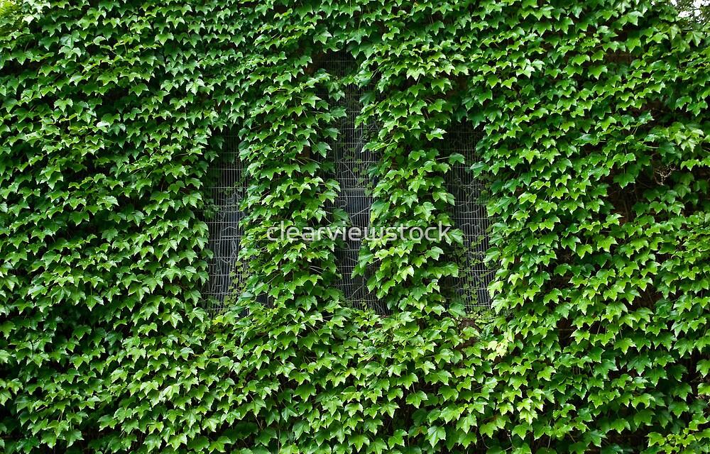 Lost Windows 3 - Gostwyck Chapel - Spring by clearviewstock