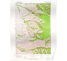 USGS Topo Map Oregon Peterson Ridge 281080 1963 24000 Poster