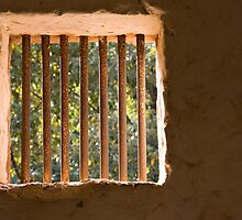 Incarcerated... by clearviewstock