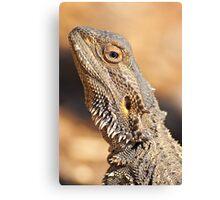 Central Bearded Dragon - Head closeup Canvas Print
