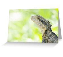 Eastern Water Dragon - Physignathus Lesueurii Greeting Card