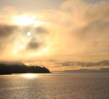 Tomorrow's Dawn by TerrillWelch