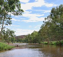 Swimming in the Todd River by clearviewstock