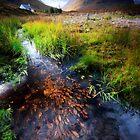 Lagangarbh stream, Glencoe, Argyll by David Mould