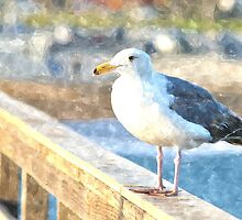 Seagull On The Pier by keng612