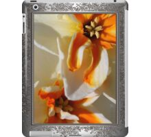 Split-cupped Narcissus named Trepolo iPad Case/Skin