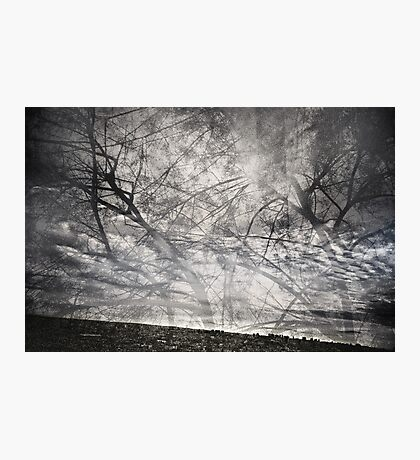 Emotional rescue Photographic Print