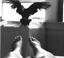 Bird Spirit Leaving the room by photoartsimage