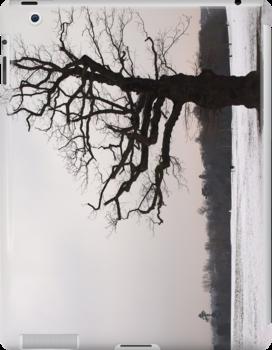Winter Oak in Morden Park, London by Ludwig Wagner