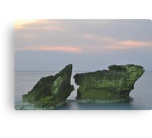 See Scape Canvas Print