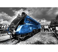 The Mallard  Photographic Print