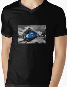 The Mallard  Mens V-Neck T-Shirt