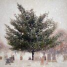 Snow is Silence by Mary Ann Reilly
