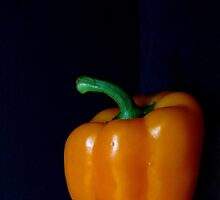 Orange Bell Pepper by Gloria Abbey