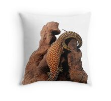 Ridge-tailed Monitor (Varanus acanthurus) Throw Pillow