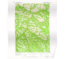 USGS Topo Map Oregon Bingham Springs 279043 1963 24000 Poster