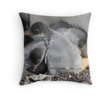 Gentoo chicks Throw Pillow
