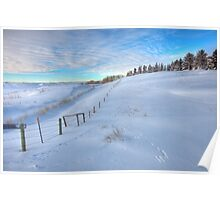 Snow Fence Poster